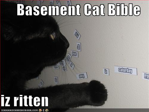 Basement Cat Iz Ritten
